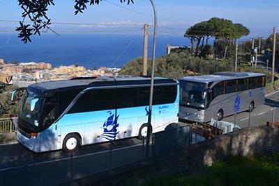 Autolinee Torquato Tasso